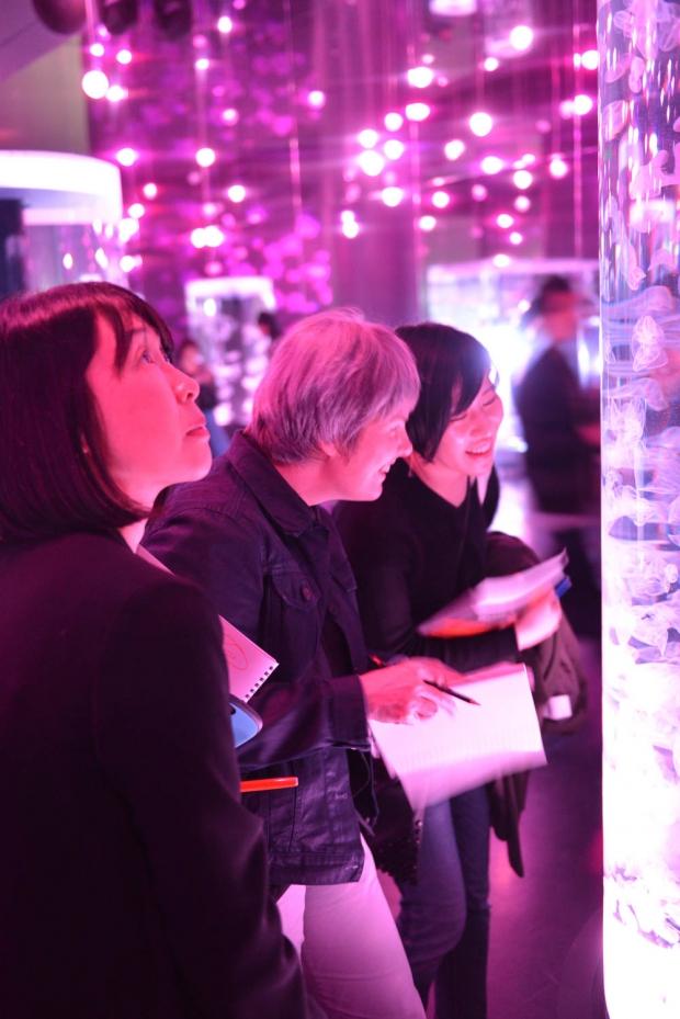 people looking at jelly fish at an aquarium